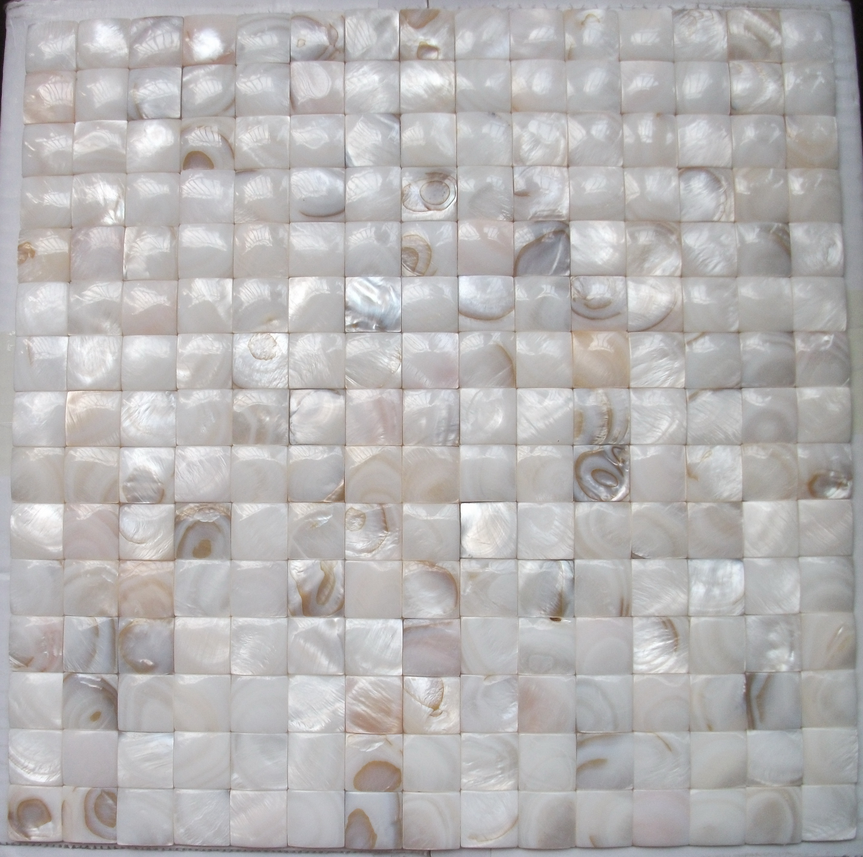 Mother Of Pearl Tile D66
